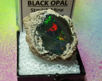 Sale BLACK OPAL 9.3 Gram Rare Natural Rainbow Flash Desert Black Opal Gemstone In Perky Mineral Specimen Box From Ethiopia Sale