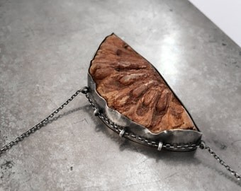 Fossilized Pine Cone in sterling silver necklace