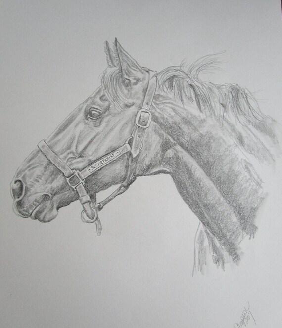 "Secretariat original pencil/graphite b/w drawing 14""x17"""