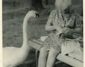 "Vintage Photo ""Looking for Treats"" Snapshot Antique Photo Old Black & White Photograph Found Paper Ephemera Vernacular - 196"