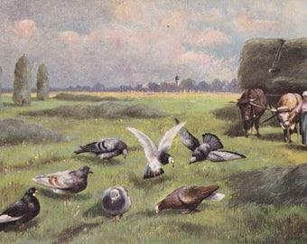 Monster Pigeons- 1900s Antique Postcard- Strange Perspective- Giant Birds- Weird- Strange- German American Novelty Art- Paper Ephemera
