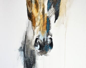 "8""x12"" - ""Alert VIII"" Photo print of a Horse Head Drawing"