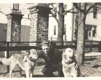"""Vintage Snapshot """"Man's Best Friend"""" Chinook Dogs Found Vernacular Photo"""