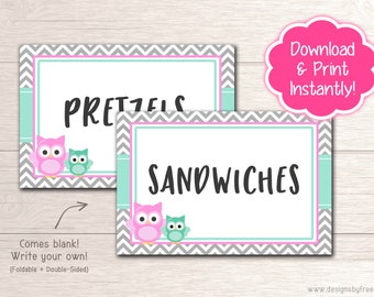Printable Owl Blank Food Tents - Baby Shower Decor - Pink and Mint Owl Baby Shower Package - Instant Download File - BS54