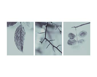 Set of 3 Blue Mint Nature Pictures Fine Art Photography Frozen Winter Art Minimalist Nature Vertical Wall Art Macro Leafs Cold Winter Prints