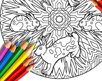 gecko lizard garden mandala coloring page by coloringcraftshack. Black Bedroom Furniture Sets. Home Design Ideas