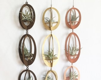 air plant hanger trio >> diamond >> plants included