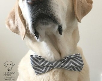 Bright Zig Zag Bow Tie and Collar OR Bow Tie Only *OPTIONAL