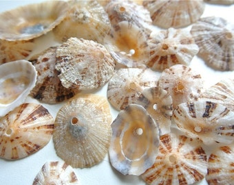 Limpet Sea Shells, 30pcs, Drilled Limpets, Drilles Sea Shells, Shell Beads, Greek Limpets, Shells For Crafts