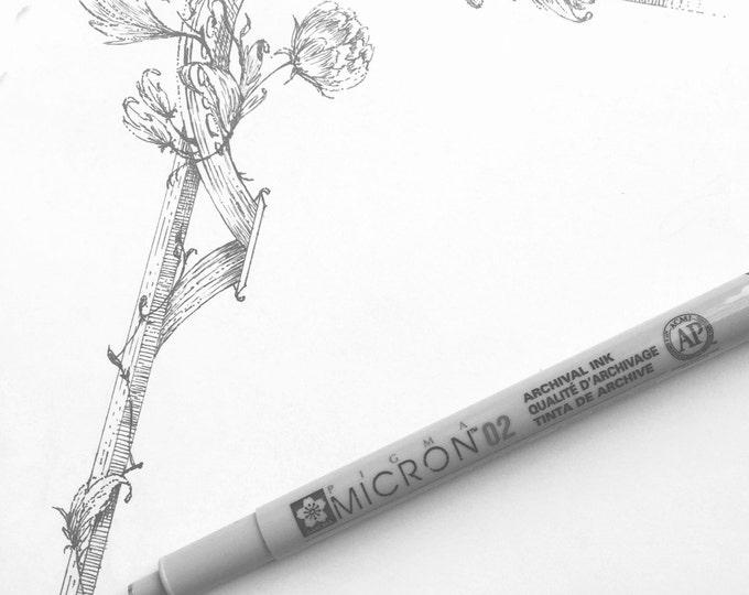 Custom Illustration Request