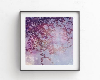 Purple wall art -blue pink wall decor - tree picture - square art - 10x10 prints,  Boho wall art,  bedroom wal hanging,  download able arts