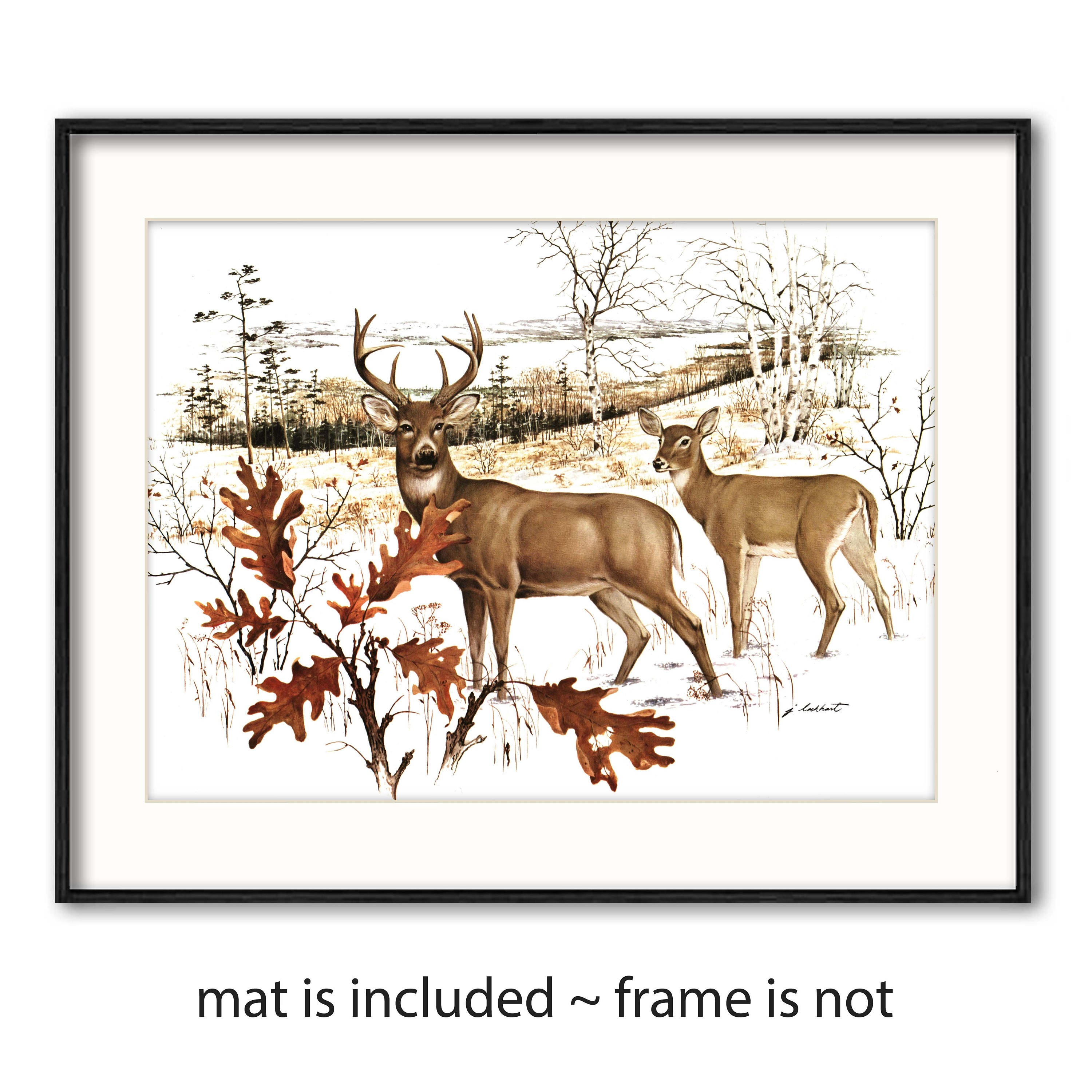 Vintage Deer Art Print W Mat Fathers Day Gift Idea Rustic