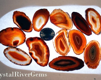 "12 pc Random Lot Red #000 Brazil Geode Agate Slices Wholesale 1""-1.5"" L"