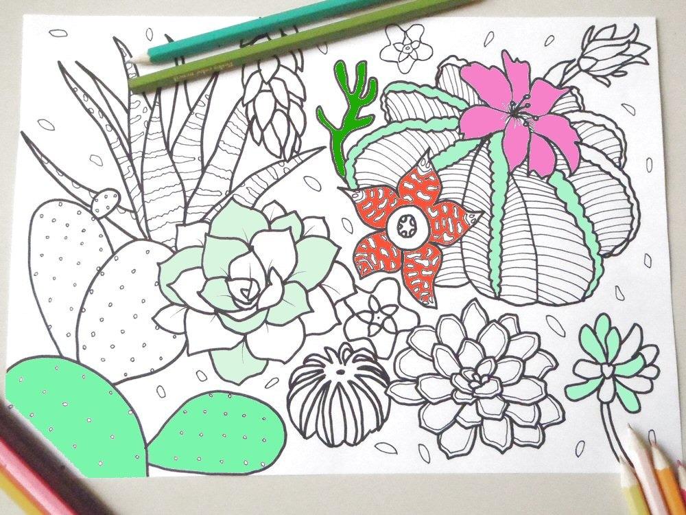 Cactus Piante Grasse Pagina Colorare Per Adulti Fiori Zen