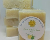 Citrus and Herb Soap - Ve...