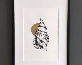 A4 Shell Print with Gold detail