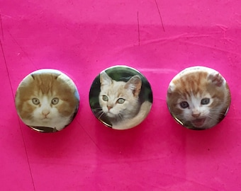 Orange Tabby Cats - 1 inch Pinback Buttons