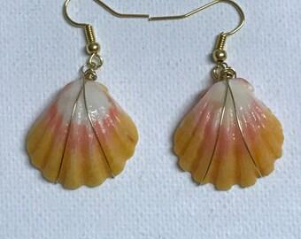 Sunrise Sea Shell Gold Wire Wrapped Dangling Earrings
