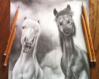 Funny Ponies. Original drawing. Horse Horses Free shipping