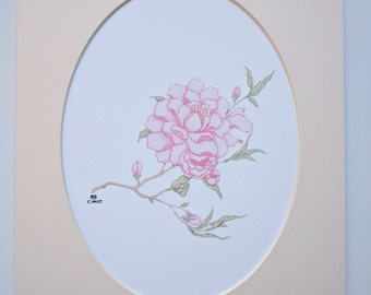 Peony Art Print in Oval Mount