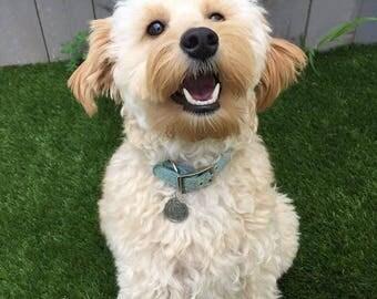 Silver Custom ID Dog Tag