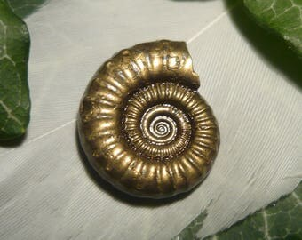 RESERVED - Fossile Pyritised Ammonite, 12.3ct