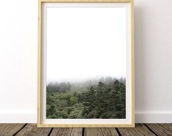 Foggy Forest, Printable Forest Art, Fog Landscape Art, Forest Print, Forest Photography, Scandinavian Print, Misty Forest, Nordic Prints,