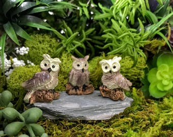 Miniature Owls - Set of 3