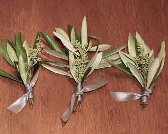 fresh olive sprig boutonniere