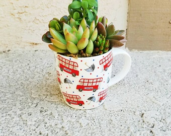 Cute London lover mug with succulents