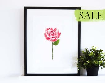 CLEARANCE // Rose