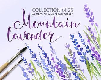 Watercolor lavender flowers clip art, watercolour floral clipart, hand painted aquarelle boho 23 flower digital Free Commercial Use PNG