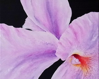 Acrylic painting art paintings flower orchid painted orchid