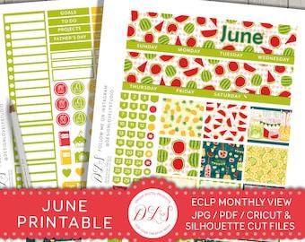 Summer Monthly Stickers Kit for Erin Condren Planner, June Monthly Stickers Kit, ECLP June Monthly View, June Planner Kit, MV128