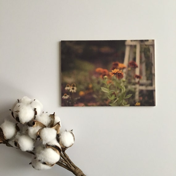 Flower Photograph - Wood Print - Fine Art Photography - Pictures of Flowers - Home Decor - Desk Shelf or Mantle Vignette - Christmas Gift