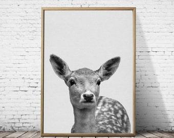 woodland nursery decor, Deer print, animal print, woodland photography, woodland animals, woodland wall art, wild animals, gift for girls