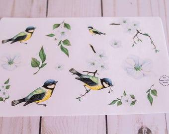 Watercolor Little Bird & Magnolia Flower Planner Agenda Stationery Stickers