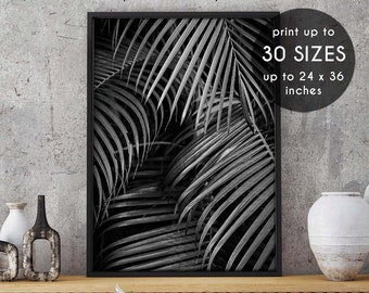 Palm, palm tree print, printable art, palm tree, tropical wall art, palm prints, tropical decor, palm print, palm tree art,tropical print,22