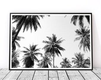 Tropical Decor, Tropical Print, Palm Trees Print, Palm Print, Tropical Wall Art, Black and White Poster, Tropical Photo Art, Palm Tree Photo