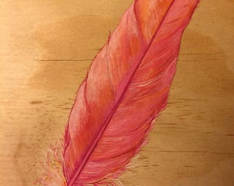 Pink feather from the feathery series.