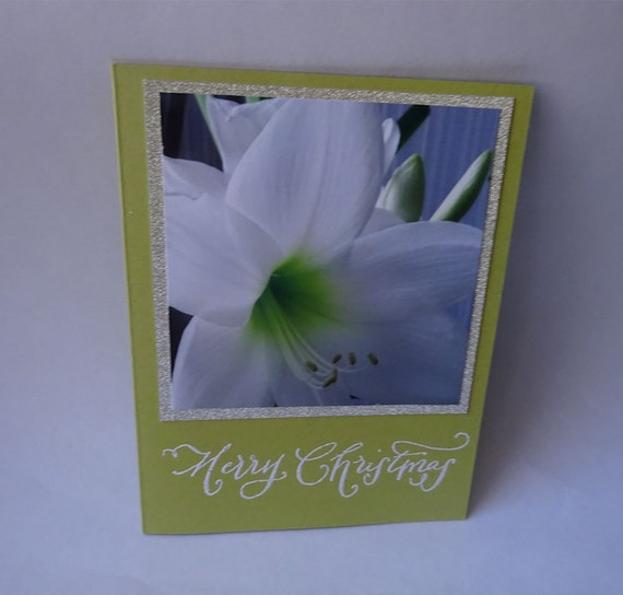 Christmas Card - Handmade Photo Card with a White Amaryllis Flower - #1108