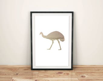 Animal Print Nursery Animal Print Nursery Décor Nursery Print Nursery Art Zoo Animals Emu Print Emu Art Print Bird Animal
