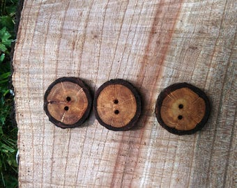 Oak buttons. Three wooden buttons made from tree branch slices.