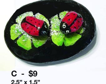 Ladybug on leaf rocks -1