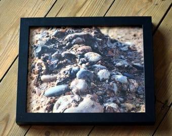 FRAMED Pebble Photographic Print - 10x8