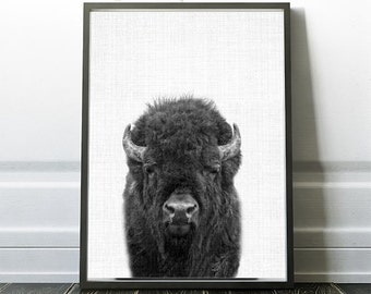 Buffalo Print, Buffalo Digital Prints, Buffalo Photography, Buffalo Photo Print, Printable Buffalos, Buffalo Wall Art Print, Buffalo Poster
