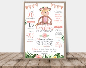 Girl's Little Monkey First Birthday Poster