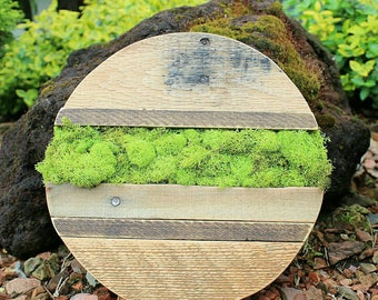 Summer Stripes // reclaimed pallet wood art // moss // garden // wood round // custom handmade // ready to ship