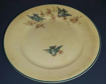 Vintage Homer Laughlin Plate. Homer Laughlin 1930s Bluebird Plate.