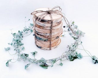 10 Birch slices , Wooden slices, Rustic wedding decoration, Wood coasters, Wood discs for home decors